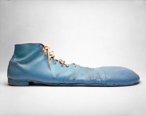 blue clown shoe